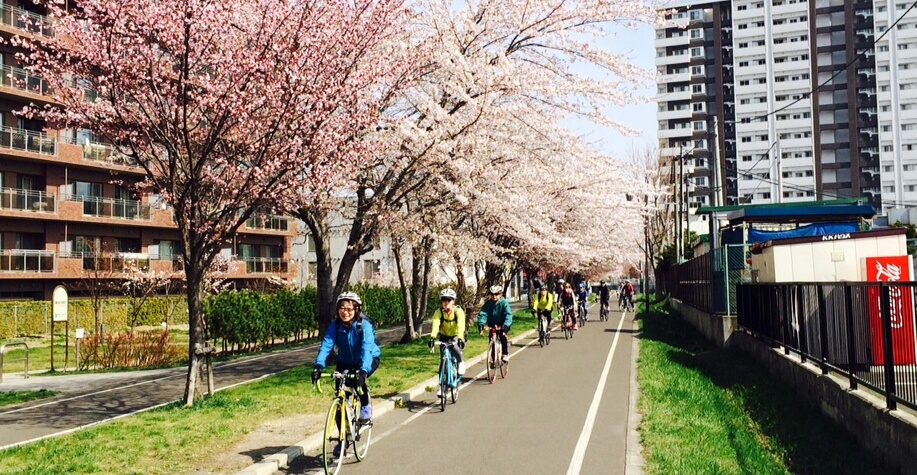 2015桜ライド