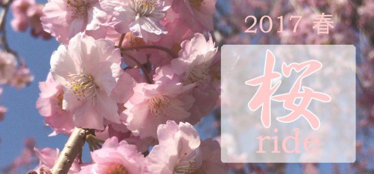 2017年4.5月の開催スケジュール